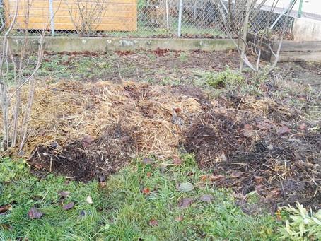 Le paillage à l'automne de mon jardin