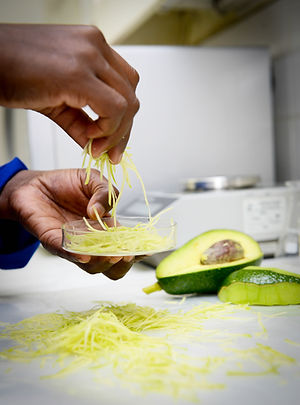 AVO halls best practices avocado testing.jpeg