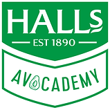 halls avocademy logo