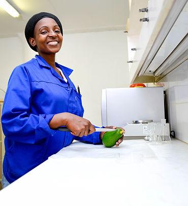 halls best practices avocado testing