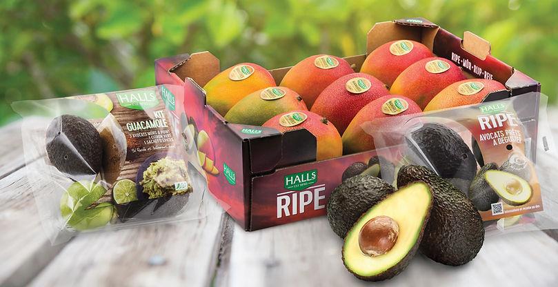 Mango-packaging.jpg