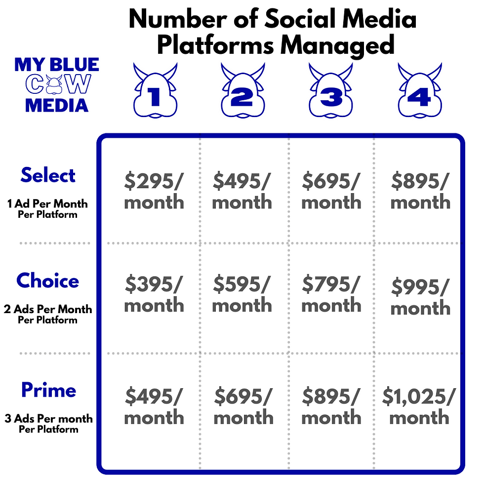 Social Media Ads Pricing 1.26.2021.png