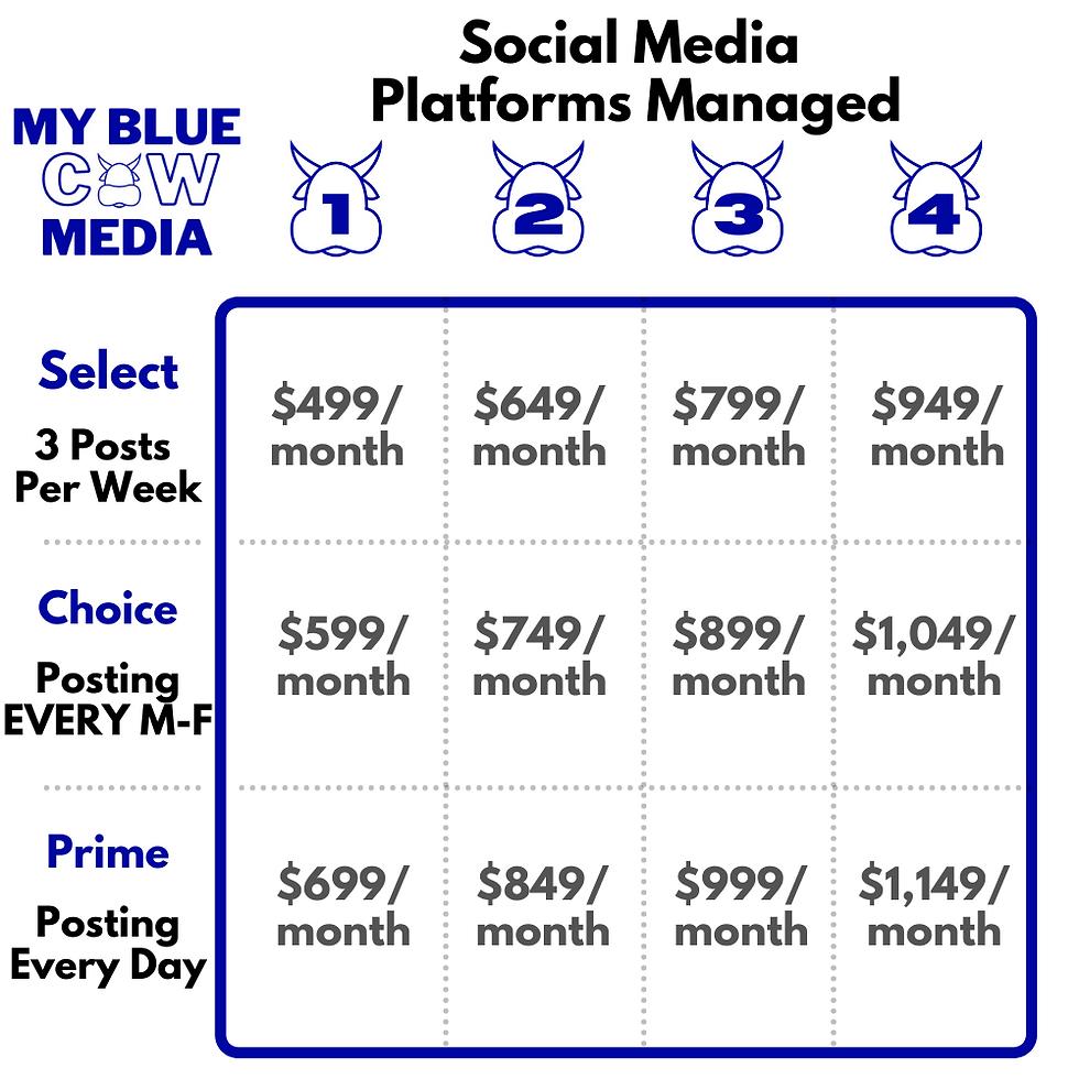 Social Media Platform Pricing 1.26.2021.