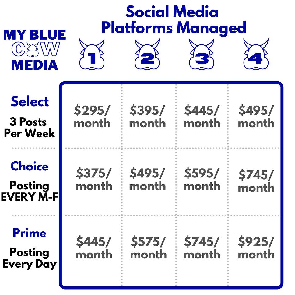 Social Media Platforms Managed Pricing.p