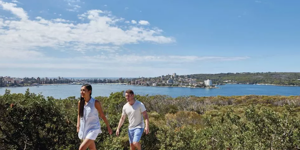 Manly to North Harbour Walk