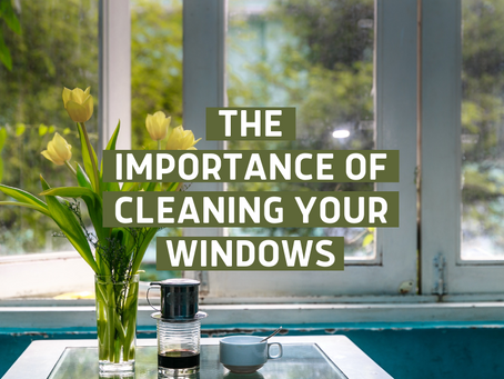 Why Window Cleaning Is More Important Than You Think