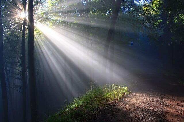 Shining A Light On My Shame