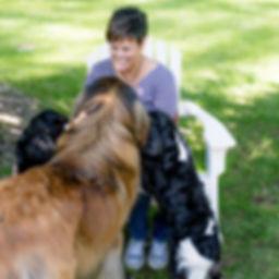 Kathy Rumsey - Dog Medium 6.10.18 LR-30.