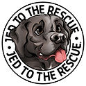 Jedto-the-Rescue-140pxWide.jpg