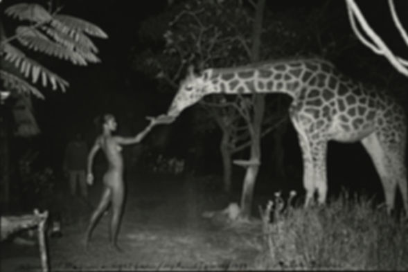 Peter Beard Giraffe & Eve_edited.jpg