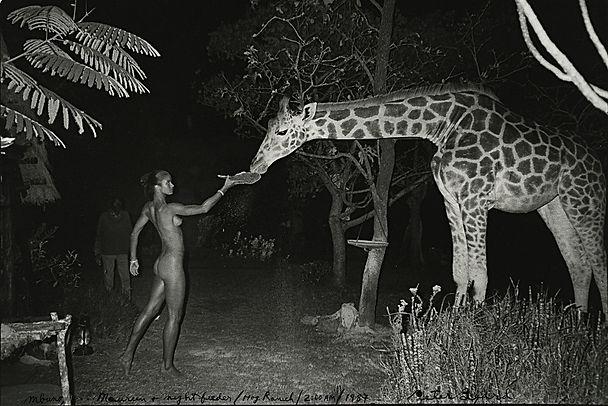 Peter Beard Giraffe & Eve_edited.jpg