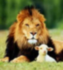 LION N LAMB_edited.jpg