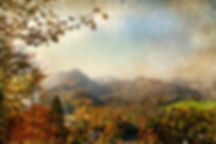 1998_12-10_Autumn Leaves #1 cropped.jpeg
