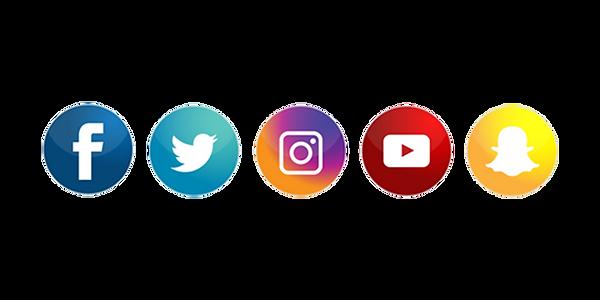 Social Media Bars.png
