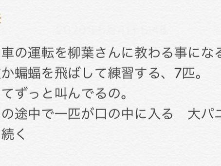 夢診断(後編)