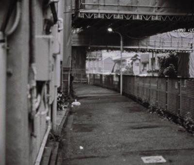 モノクロのフィルムが現像できました。