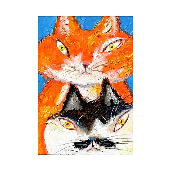 [이미나] 고양이들