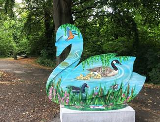 River Swan