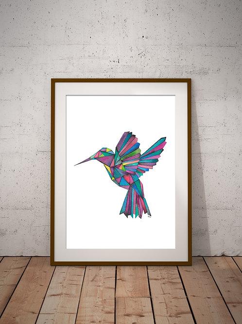 Hummingbird Print