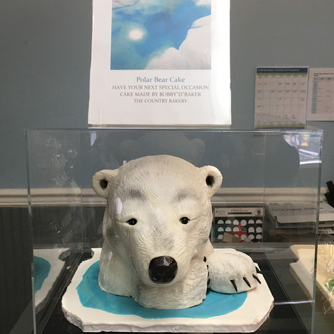 Polar Bear Display