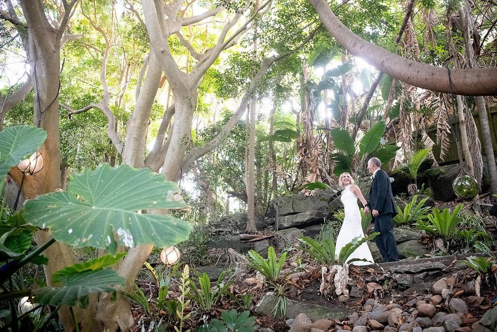 weddings_50854615482_o.jpg