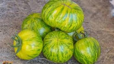tomates green zebra le kilo