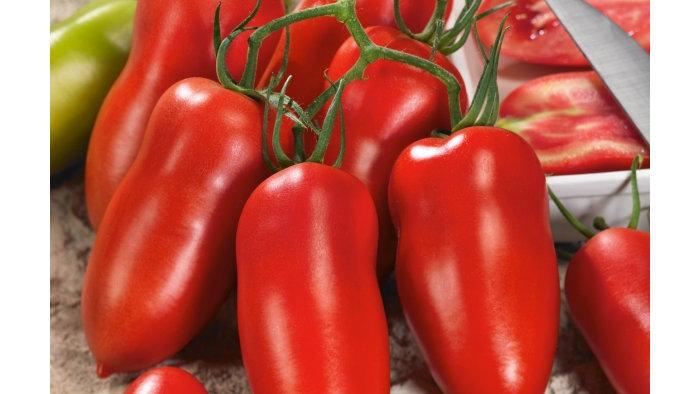 tomate cornue des andes le kilo