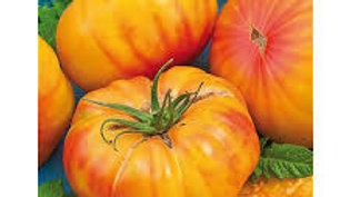 tomate ananas le kilo