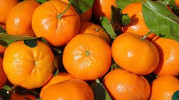 clementines corse le kilo