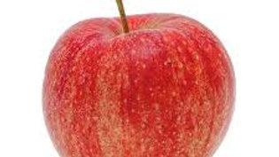 Pomme royale gala le kilo
