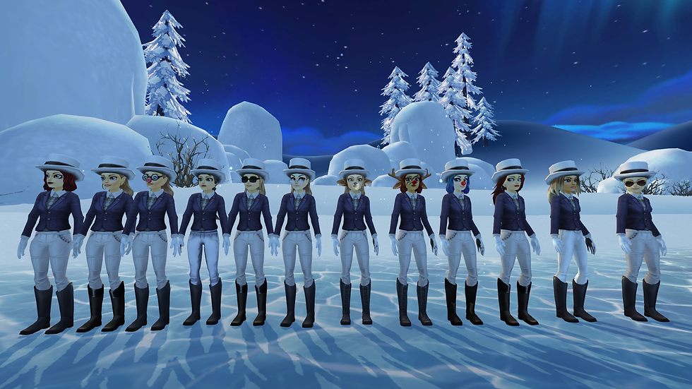 StarStable_2021-01-12_20-53-22.png