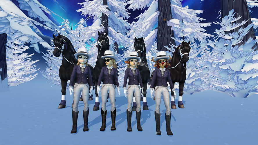 StarStable_2021-01-12_21-17-53.png