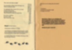 HERBALHOWTO_pamphlet8.jpg