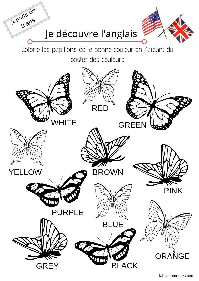 Coloriage papillons-je découvre l'anglais