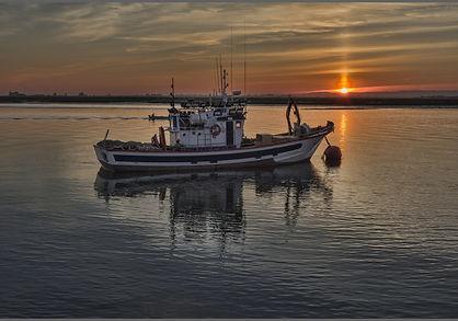 shrimp boat.jpg