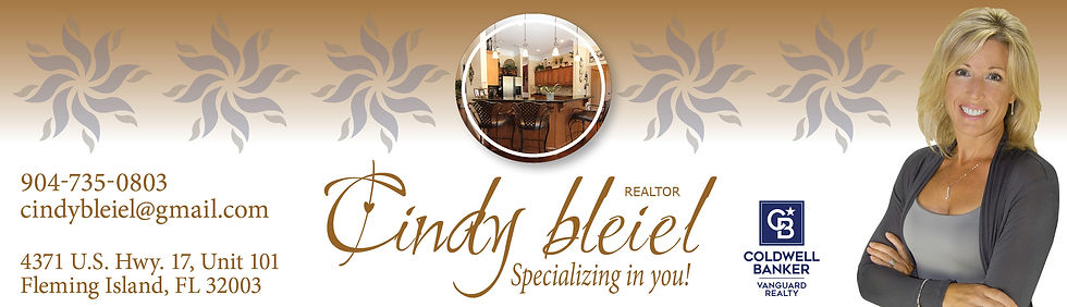 Cindy Bleiel Web Header Branded.jpg