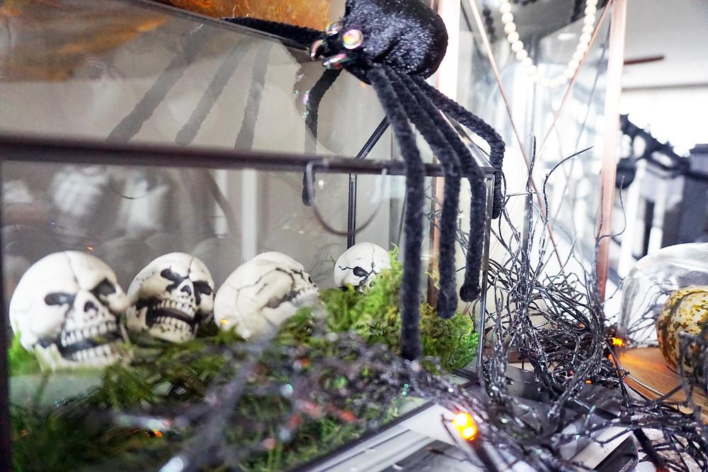 EH Design Blog - Halloween Decorations - Spider on Terrarium full of skulls