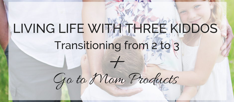 Living Life with Three Kiddos + Go to Mom Products!