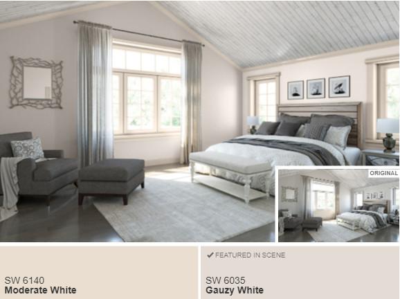 6 SW Gauzy White- Color Visualizer