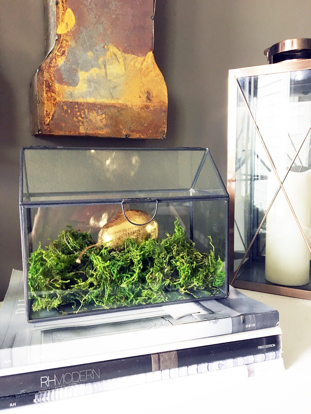 EH Design Blog - The Many Faces of Moss - Example with Moss in Terrarium