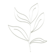 EHDFinal_LeafGreen.png