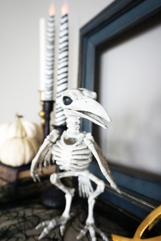 EH Design Blog - Halloween Decorations - Close up of bird skeleton