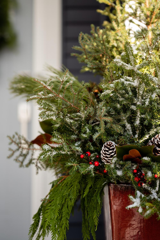Large holiday planter