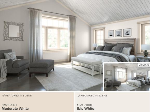 11 SW Ibis White- Color Visualizer
