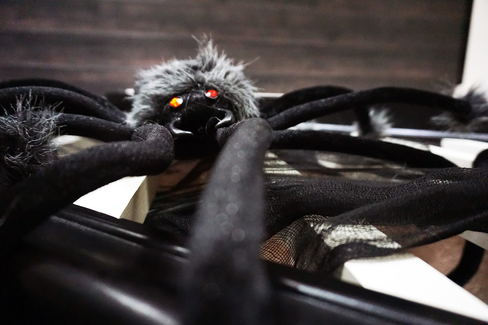 EH Design Blog - Halloween Decorations - Close up of Large spiders on banister