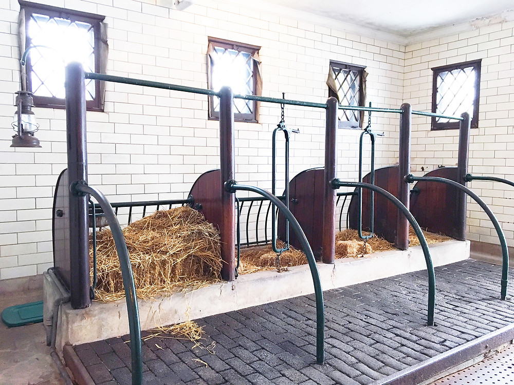 EH Design Blog - Carriage House of the horse feeding area