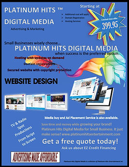 Flyer for PHDM Webdesign Services Revisi