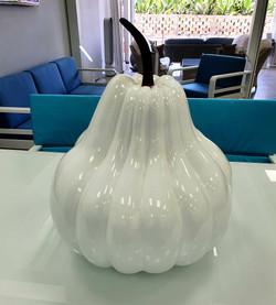 Large white pumpkin
