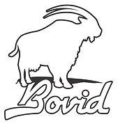 Bovid logoW2.jpg