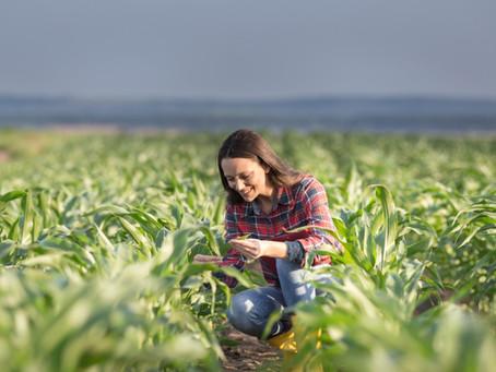 La perspectiva de género en el agro: buscan achicar la brecha económica entre mujeres y hombres